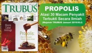 trubus1